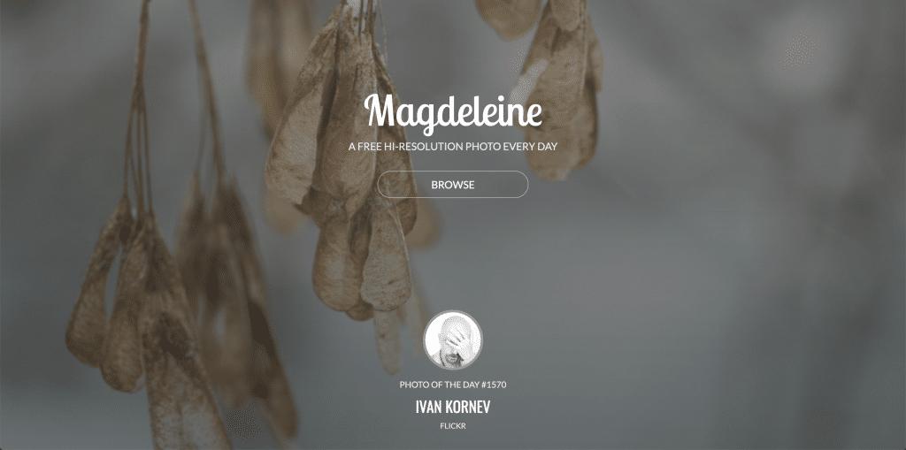 banques d'images vintage Magdeleine
